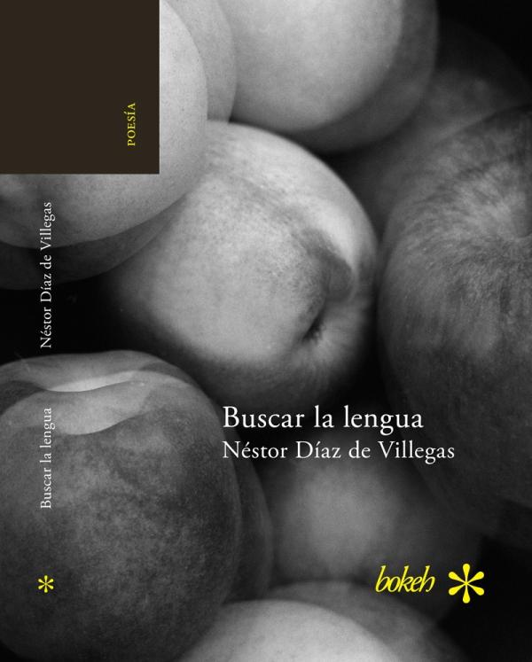 BuscarlalenguaCov copy